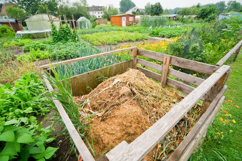 compost and nutrient-rich soil go hand in hand