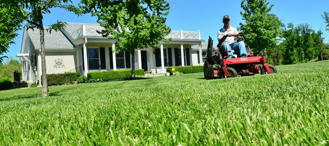 outsource your lawn care