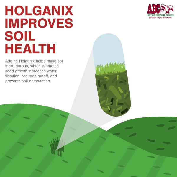 Holganix improves soil health
