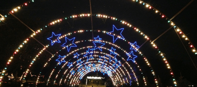 Austin Trail of Lights Tickets