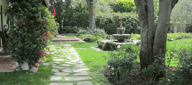 Backyard landscaping Houston