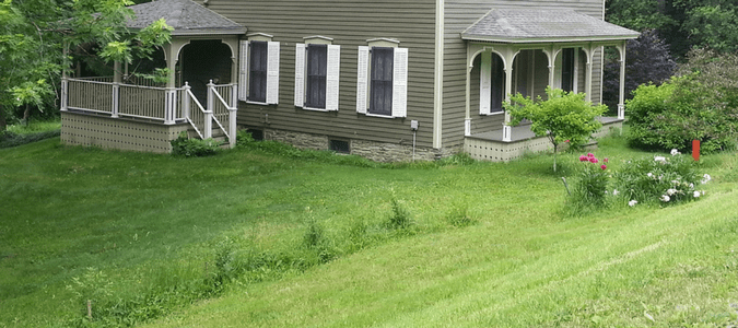 Overseeding Weedy Lawn: Homeowners Take Back Their Yards