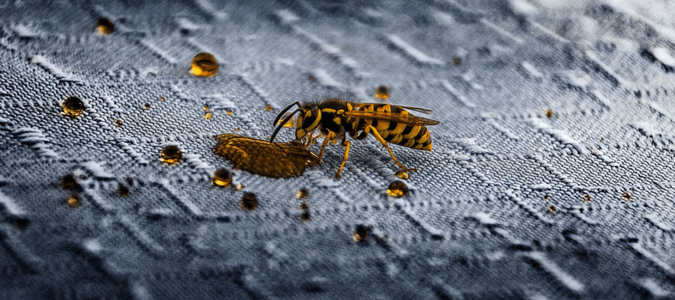 What Attracts Wasps And How To Keep Them Away | ABC Blog
