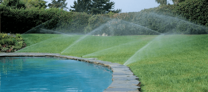 Best time to water lawn in hot weather