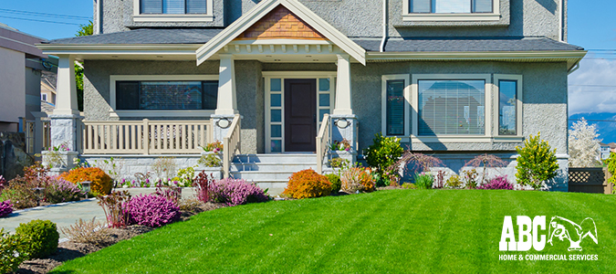 How to Prepare Your Yard for Spring and Summer