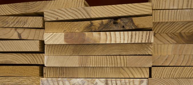 Wood boring beetles treatment
