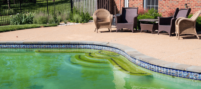 pool turned green overnight
