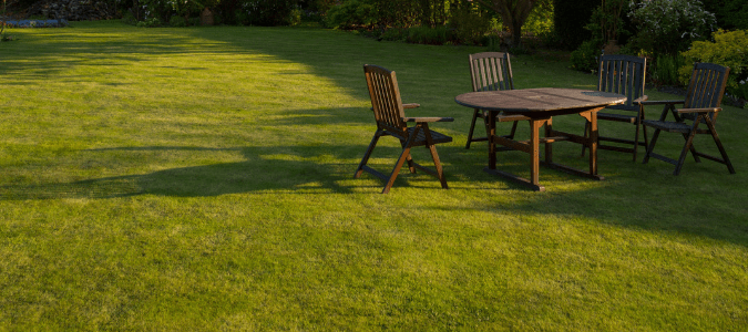 A backyard with green grass