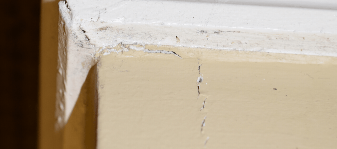 signs of termite damage in ceiling