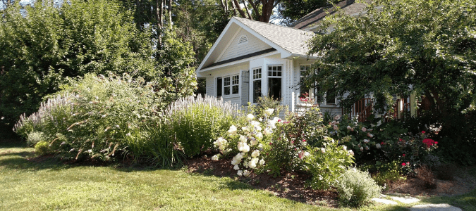 a yard where someone has successfully kept grass out of flower beds