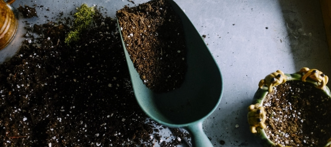 A shovel of compost used to fertilize a garden.