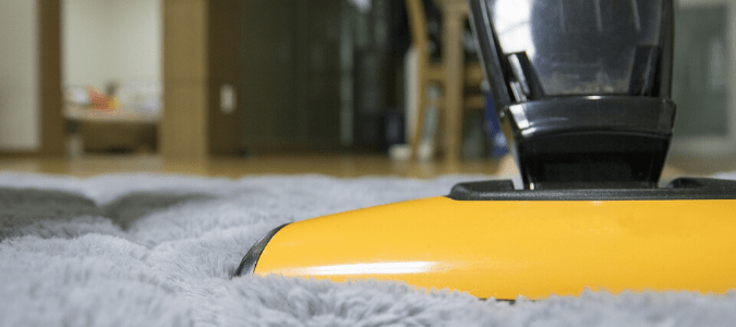 a homeowner vacuuming their carpet because fleas can hide there