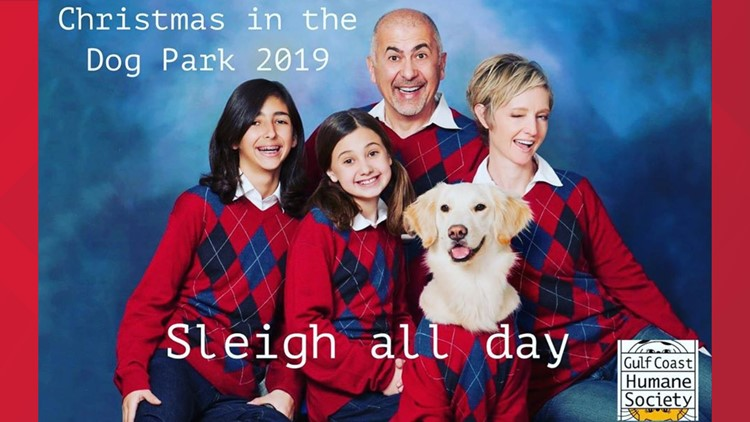 family and dog dressed in Christmas sweaters