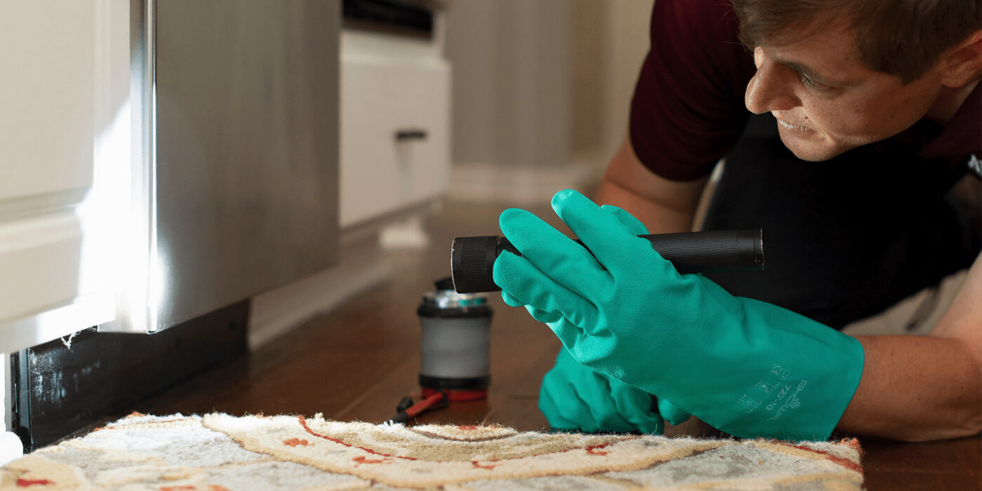 an ABC pest control specialist performing an inspection for a homeowner's cockroach problem