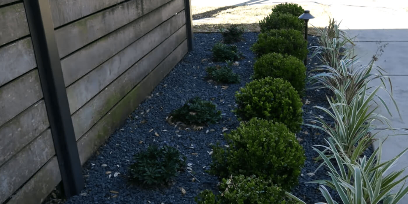 ABC landscaping professionals updating homeowners' backyards with new plants and pavers