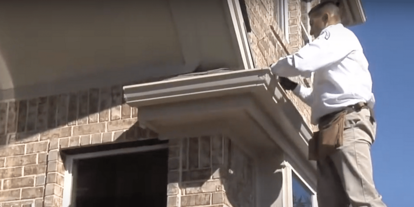 a rodent control specialist sealing off potential rodent entry points