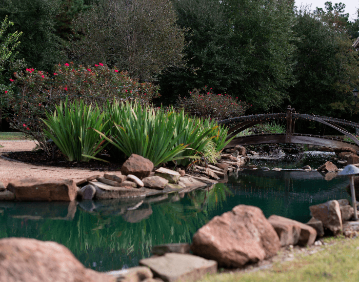 a commercial landscaping project completed by ABC with a man made river, a bridge and native plants