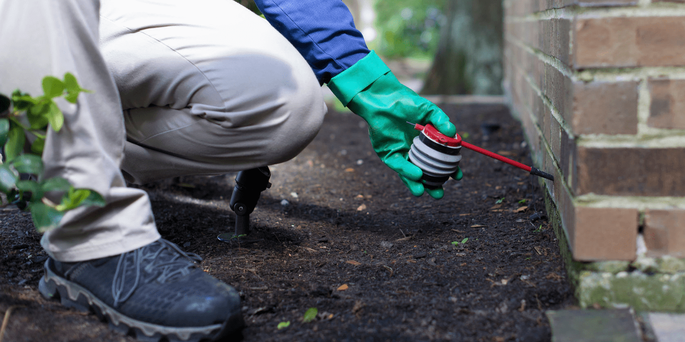 a specialist applying treatment for fire ant control