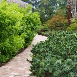 un jardín recién reacondicionado con una pasarela pavimentada y arbustos frondosos
